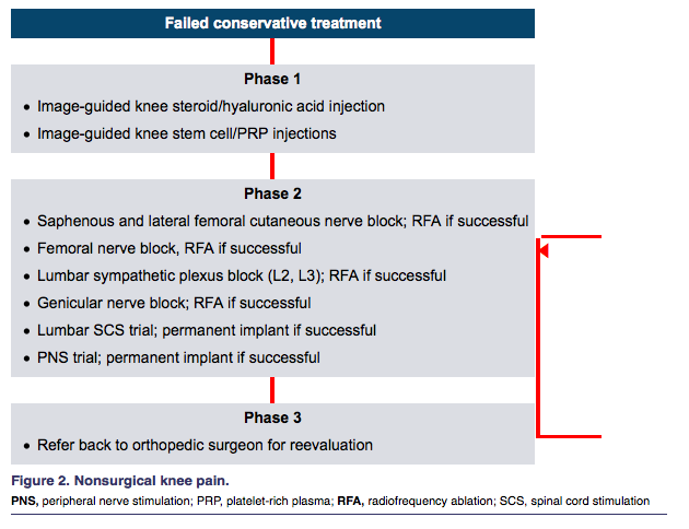 comprehensive management of chronic knee pain, Muscles